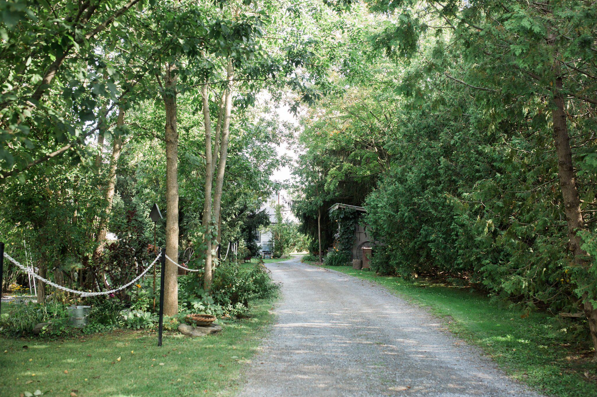Northview Gardens Wedding  - entrance