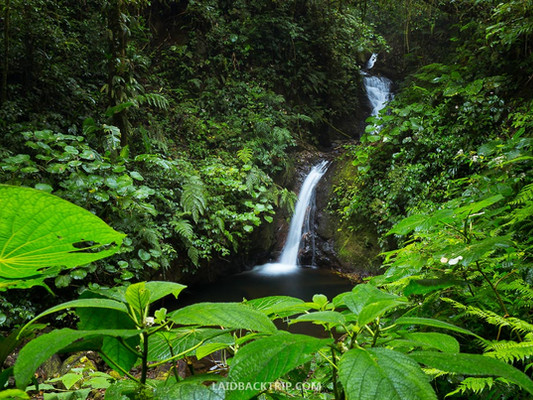monteverde-costa-rica-guide++things-to-d