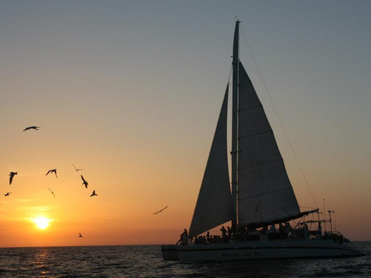 Marlin-del-Rey-Catamaran-A-5-jpg.jpg