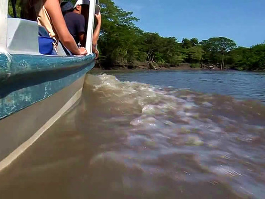 xPALO-VERDE-tour-costa-rica-vacation.jpg