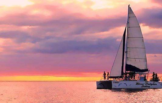 13982-blue-dolphin-catamaran.jpg