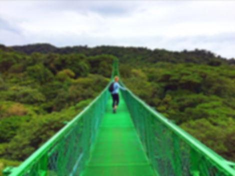 Monteverde1.jpg