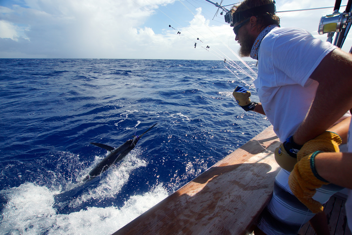 sport-fishing-18