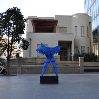 blue wing.jpg