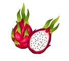 fruit du dragon.png