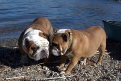 titus and Holly at lake 1