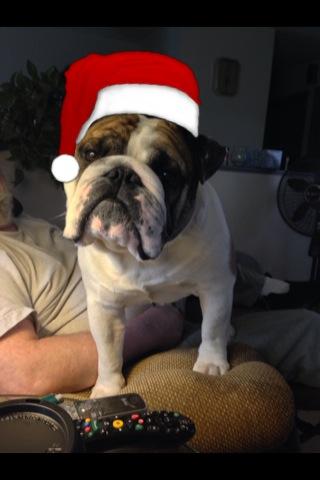 Dude christmas 2014 pic