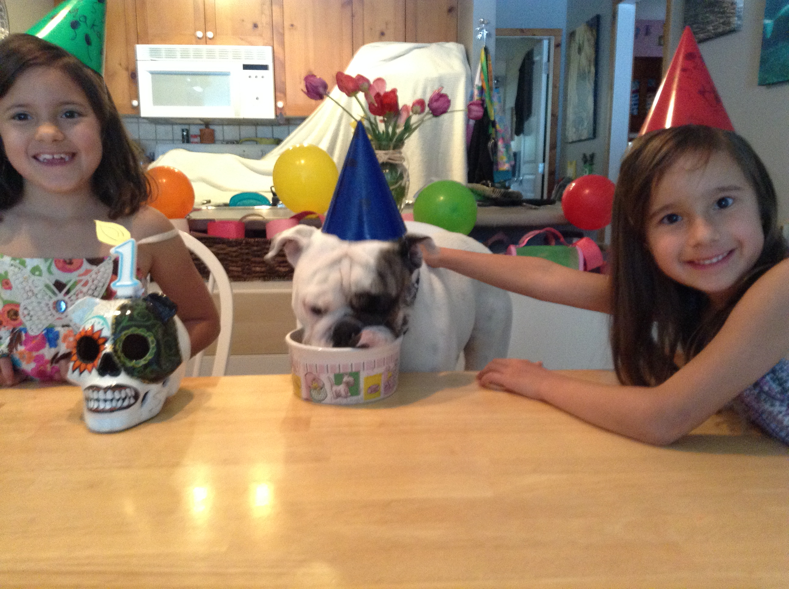 Odie birthday picture