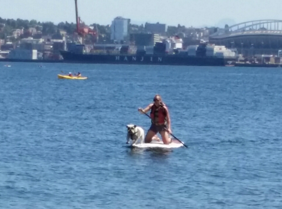 pie on paddle board.