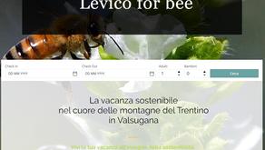 L'informatica e le nuove tecnologie, le api e i fiori selvatici