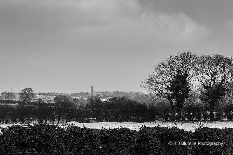 Snowy Norfolk 1