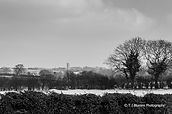 Snowy Norfolk 1 Small.jpg