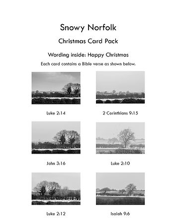 Snowy Norfolk Card insert sheet.jpg