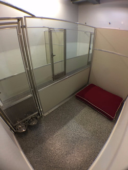 Large Suite Accommodations