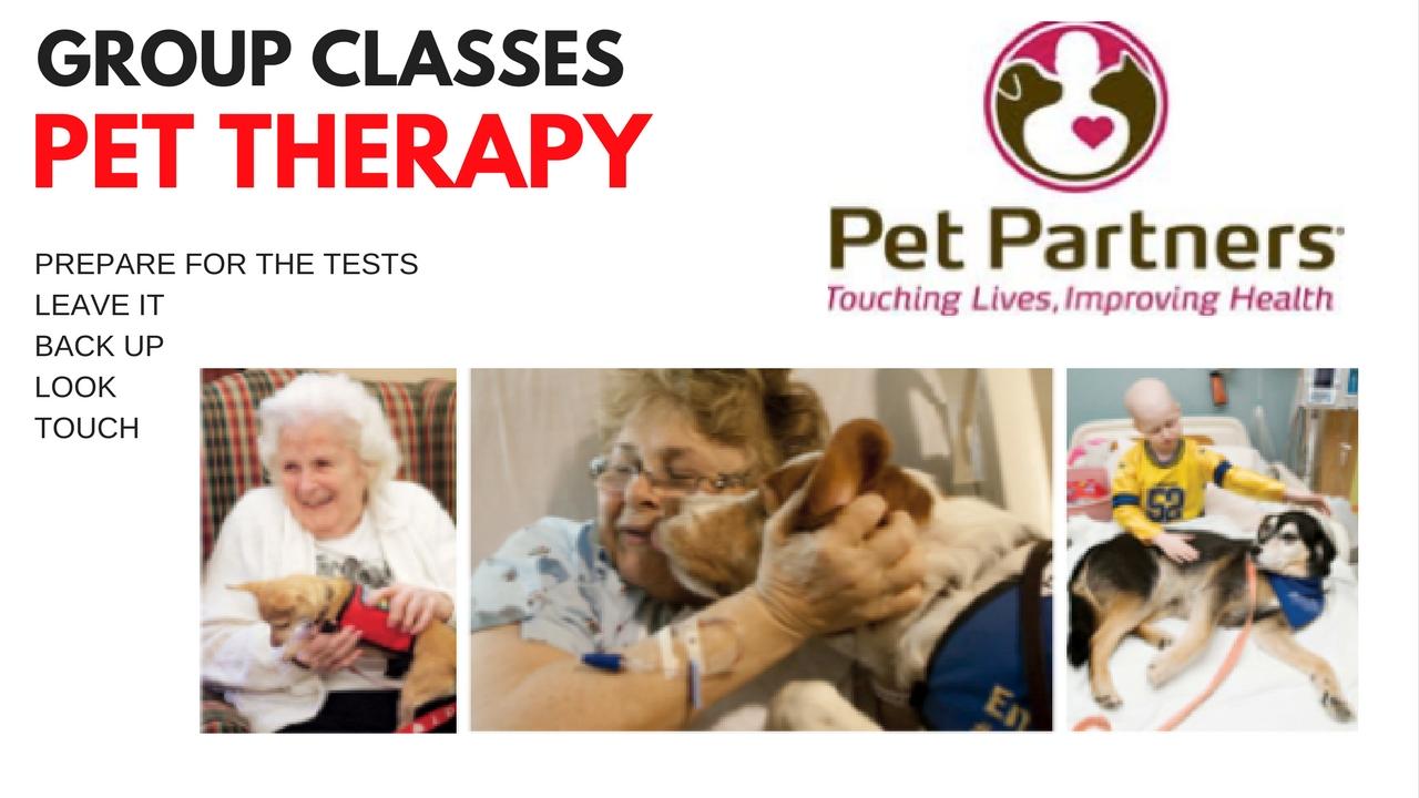 Pet Partners Pet Therapy