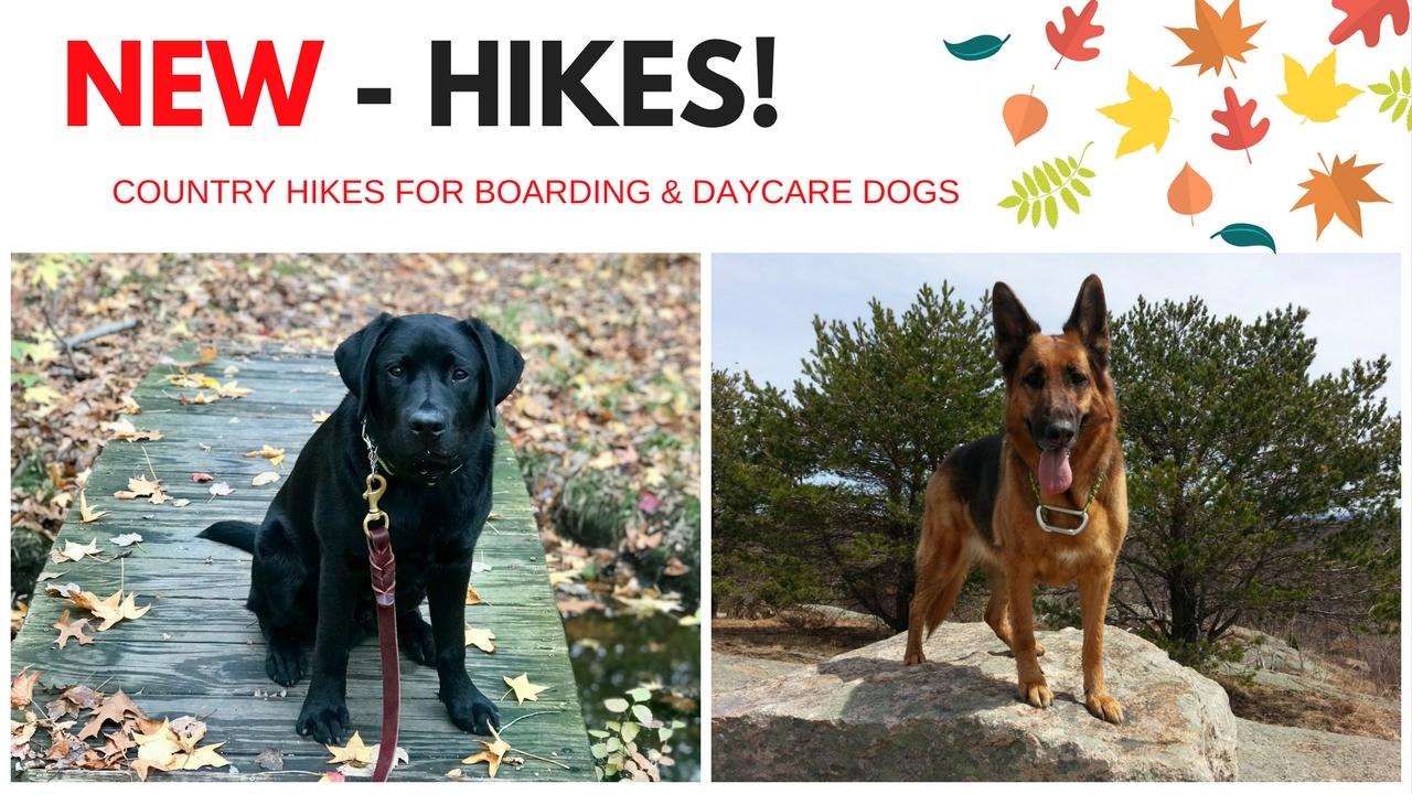 Country & Coastal Hikes
