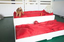 Big Comfy Beds