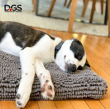DGS DISCOUNTS! YOUR DOG HAS NEVER BEEN SO COZY & CLEAN! Discount code: 15CENTER