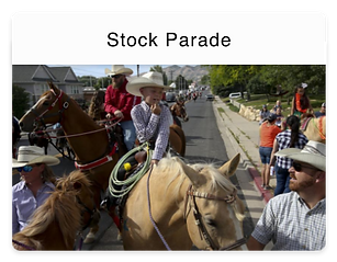 stock_parade@2x.png