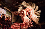 Flamenco Show Madrid.jpg