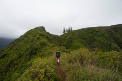 MB hiking the Waihee Ridge Trail in Maui 2015.jpg