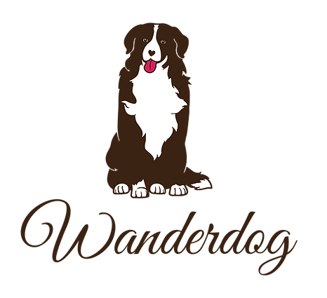 dog training in bermondsey