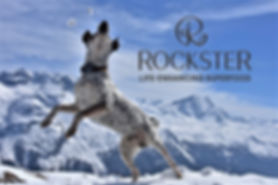 xRockster-Jumping-to-catch-snowballs-wit