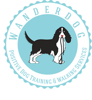 dog training and walking services in bermondsey