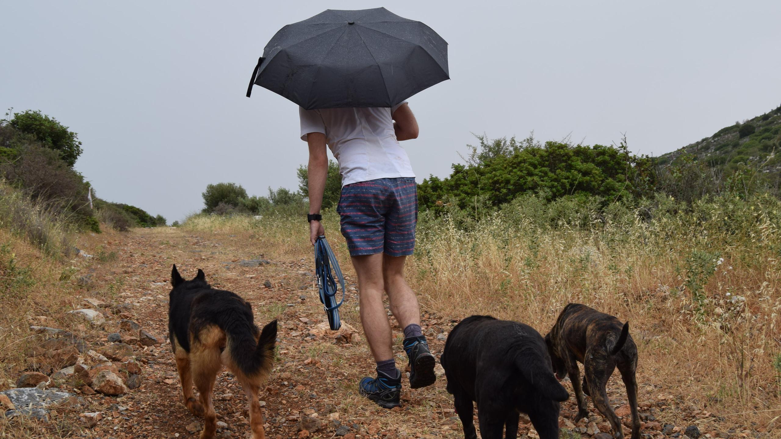 Rain in May, unheard of!