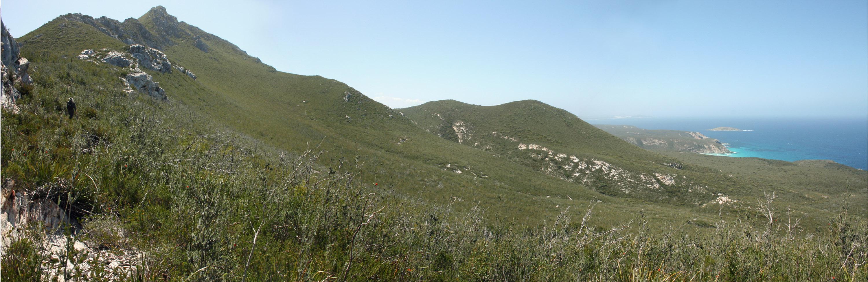 Thumb Peak Ridge_looking East_Fitzgerald River NP_1