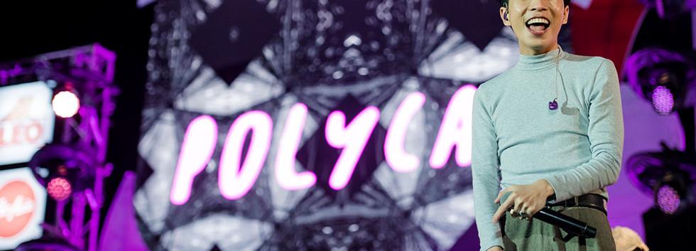 Polycat-3.jpg