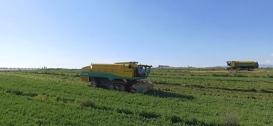 AGRICULTURA PRECISION.jpg