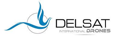 logotipo delsat_alta resolución-horizont