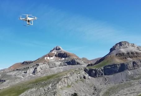 Drones al servicio de la ganadería extensiva