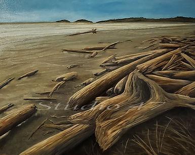 Canada art, oil paintng, west coast art, bech painting