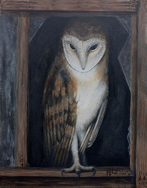 Barn+Owl.jpg