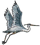 Herons Flight B&B logo