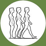 rolfing 3 women side views.jpg