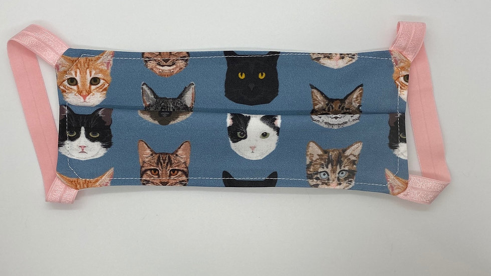New! Blue Kitty Cats