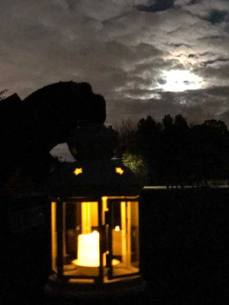 Lantern and full moon.jpg
