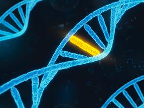 Qu'est-ce que le génome humain?