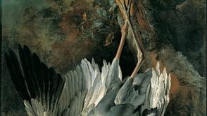 Jean-Baptiste Oudry - Dead Crane