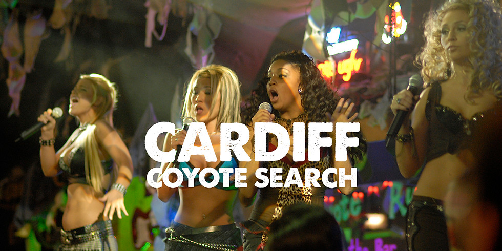 Coyote Search - Cardiff