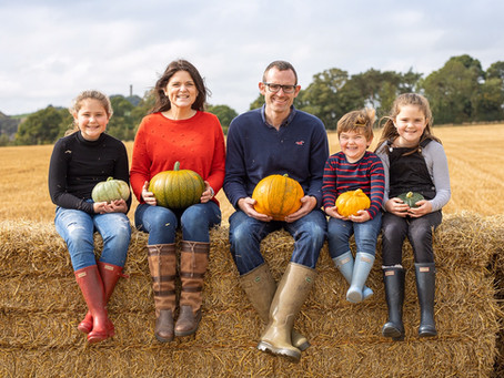 FROM PUMPKIN PATCH TO DINNER PLATE