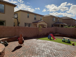 Backyard Remodel (2)