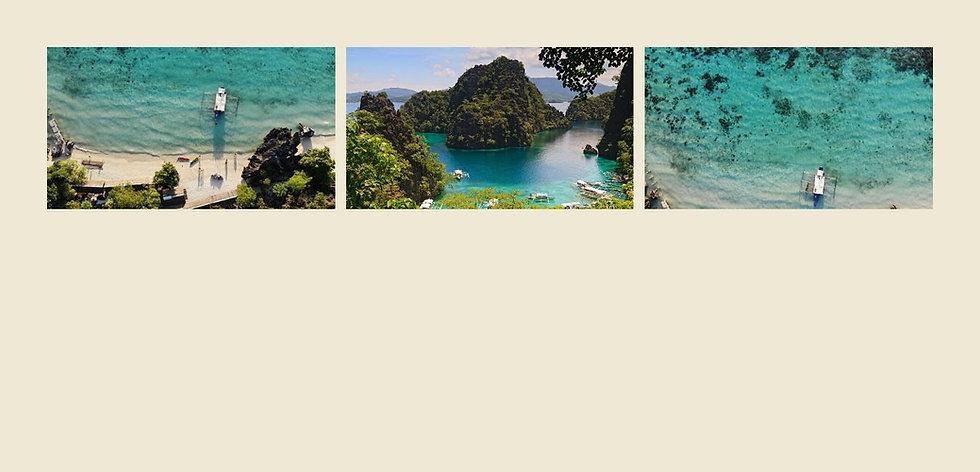 Vela Website (1).jpg