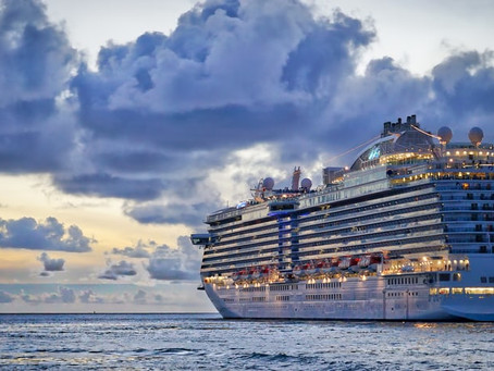 Cruise ship coronavirus outbreaks have forced the industry to make drastic changes