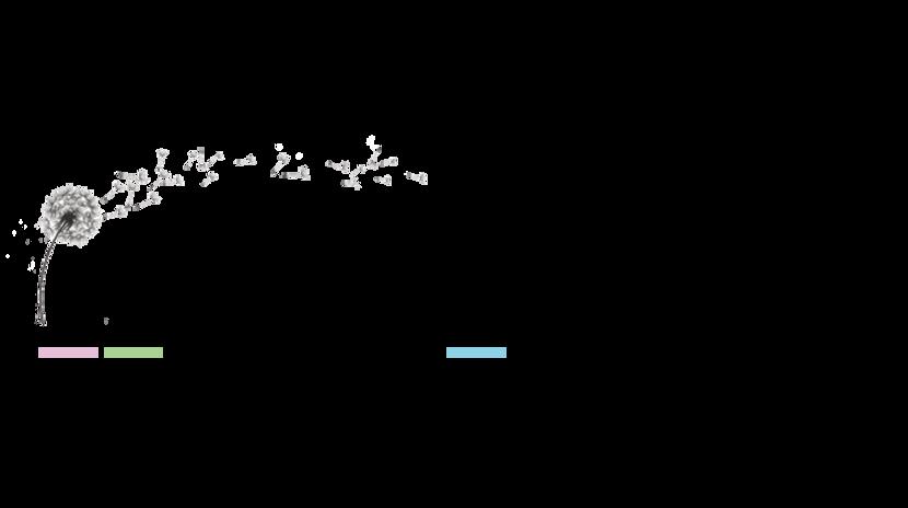 entete-logo-wix.png