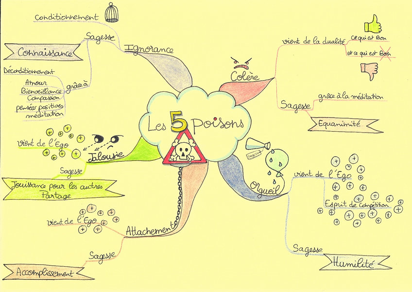 les 5 poisons_edited.jpg