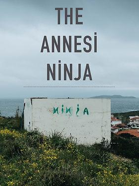 The Annesi Ninja